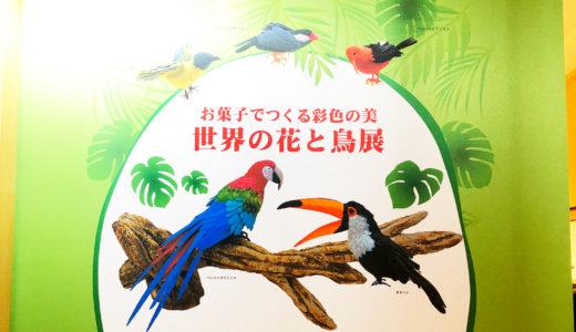 「お菓子でつくる彩色の美 世界の花と鳥展」へ行ってきました!