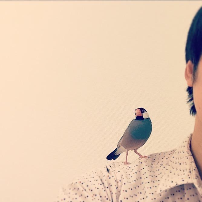 飼い主の肩で寄り添う文鳥のラムネくん