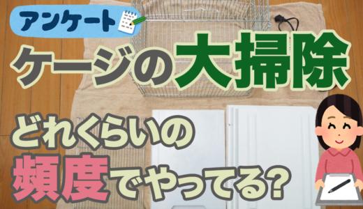鳥のケージの丸洗い(大掃除)はどれくらいの頻度でやればいいの?【アンケート結果】