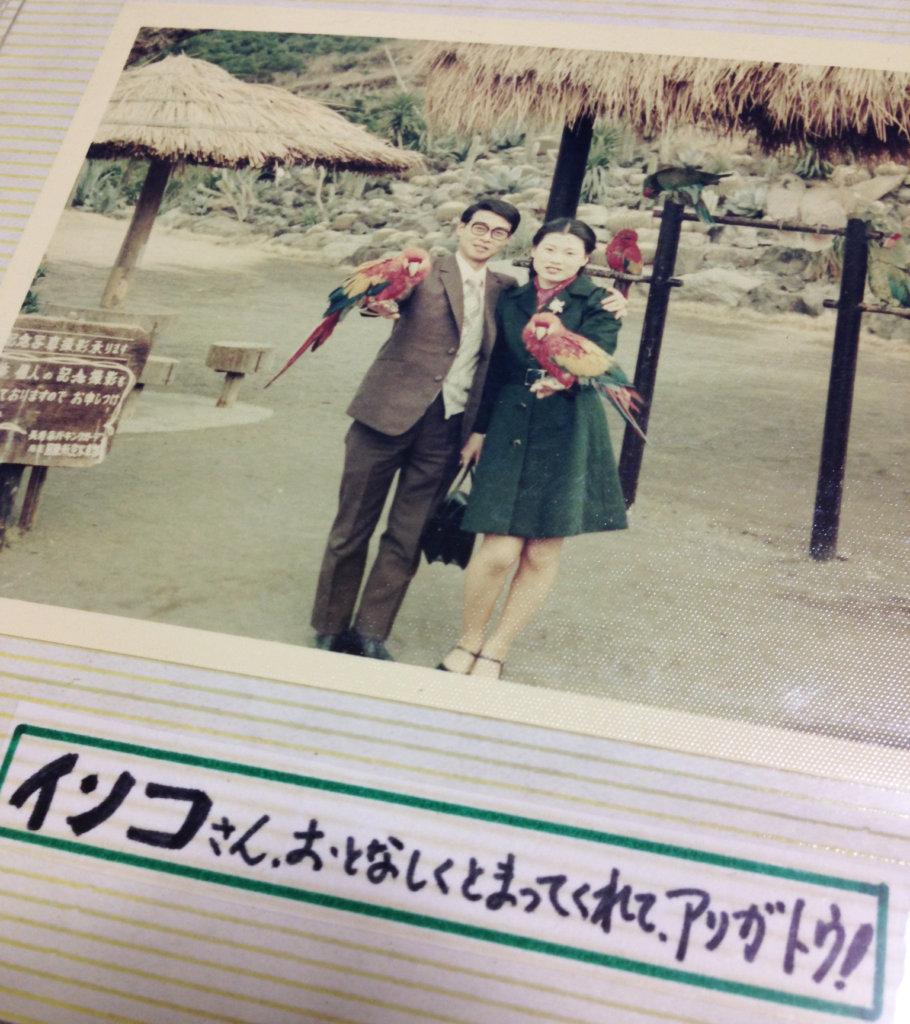 両親が新婚旅行先の「長崎鼻パーキングガーデン」にてコンゴウインコを腕に乗せて記念撮影をしている