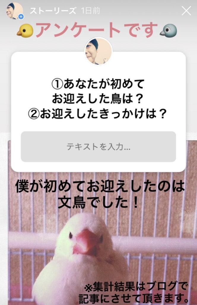 Instagram ストーリーズの質問画面