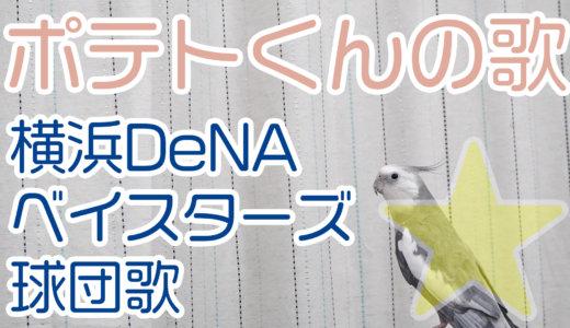 ★横浜DeNAベイスターズ球団歌を唄うオカメインコのポテトくん(NG集もあるよ!)★