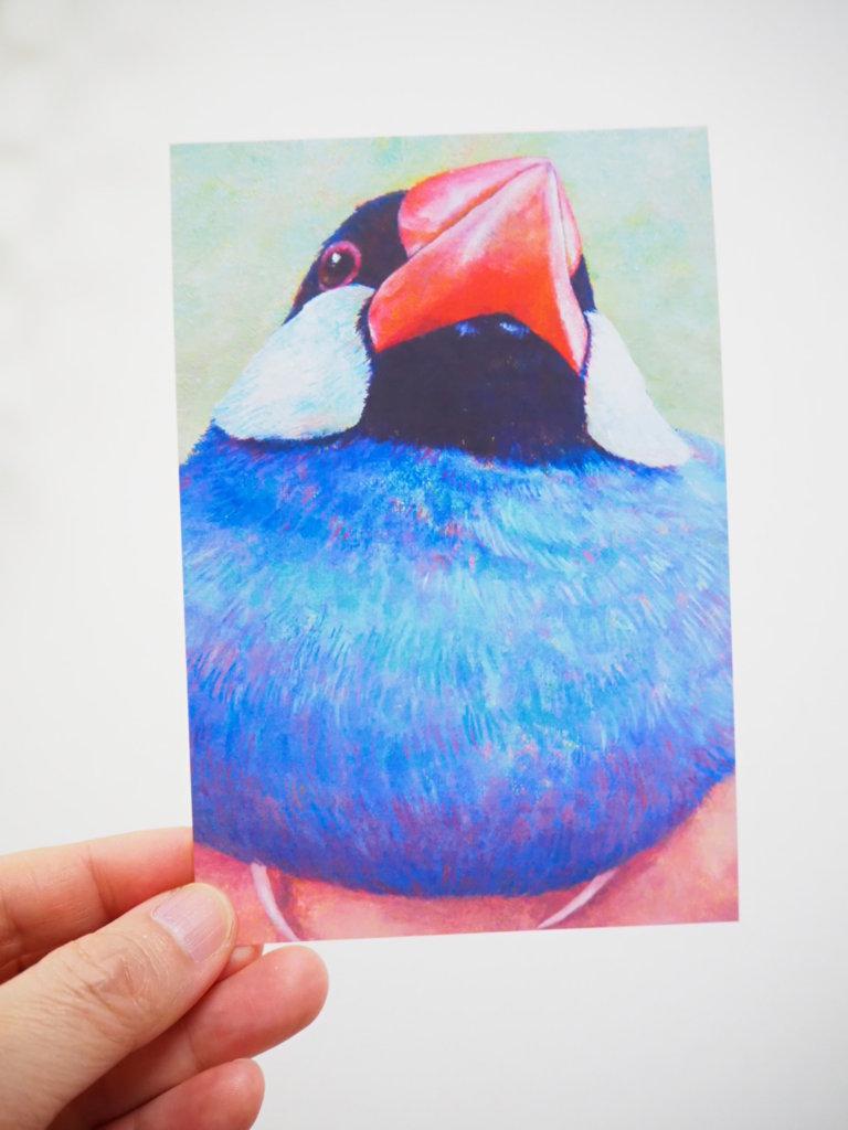 中島萌さんのポストカード(文鳥)