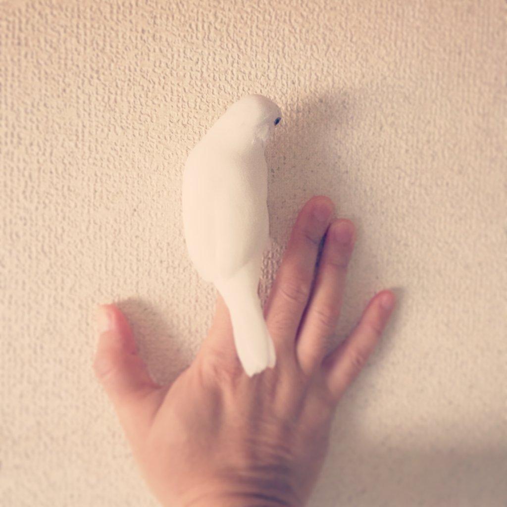 文鳥のチロルちゃんの背中