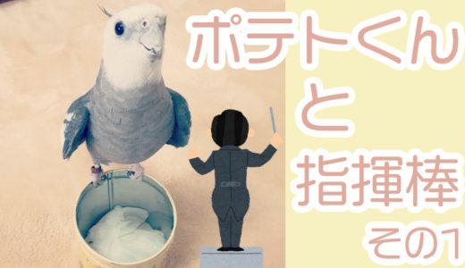 ポテトくんと指揮棒〜その1