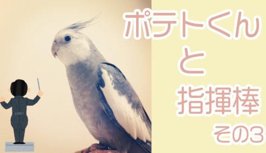 ポテトくんと指揮棒〜その3