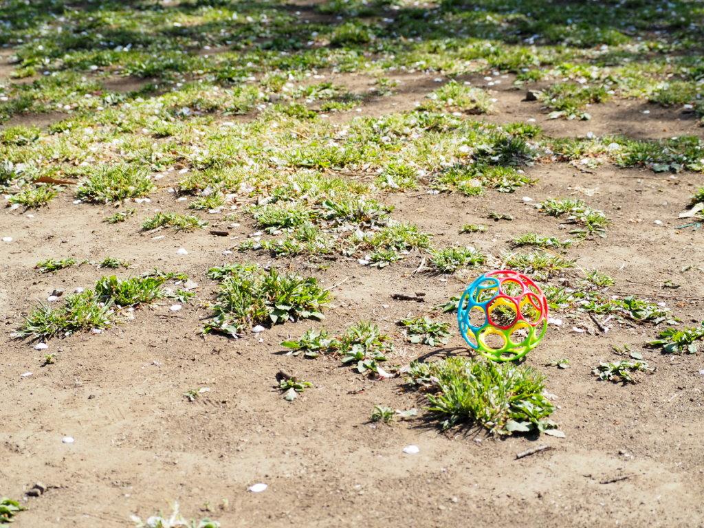 井の頭公園に落ちていたこどものおもちゃ