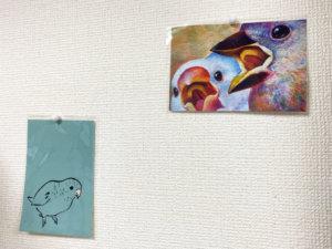 サザナミインコと文鳥のポストカード