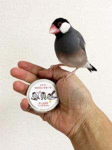 文鳥堂さんのマスキングテープと文鳥のラムネくん