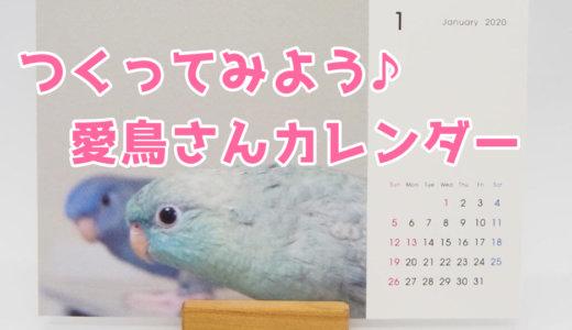 【鳥・インコ】TOLOTで2020年の愛鳥さんオリジナル卓上カレンダーを作ろう!