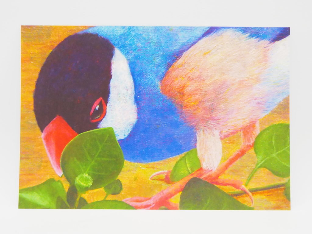 中島萌さんのポストカード