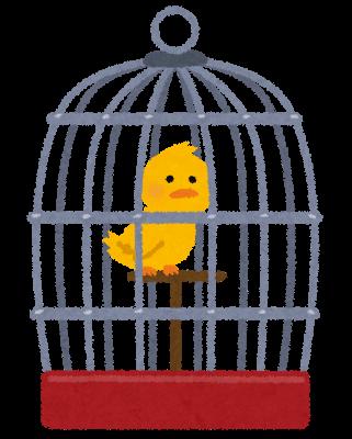 ケージに入っている黄色い鳥