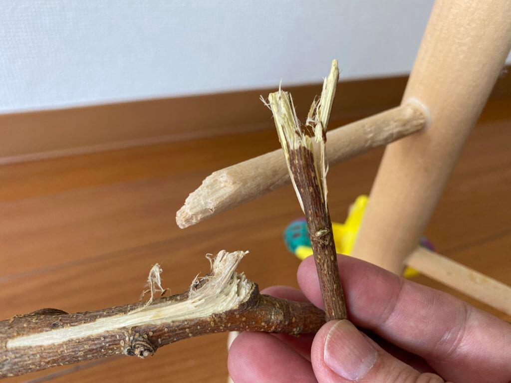 かじられた桑の木の枝と止まり木タワー