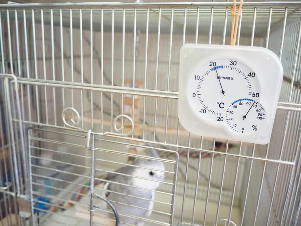 オカメインコのポテトくんのケージに設置している温湿度計