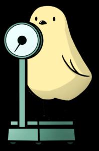 体重計に乗った鳥のイラスト
