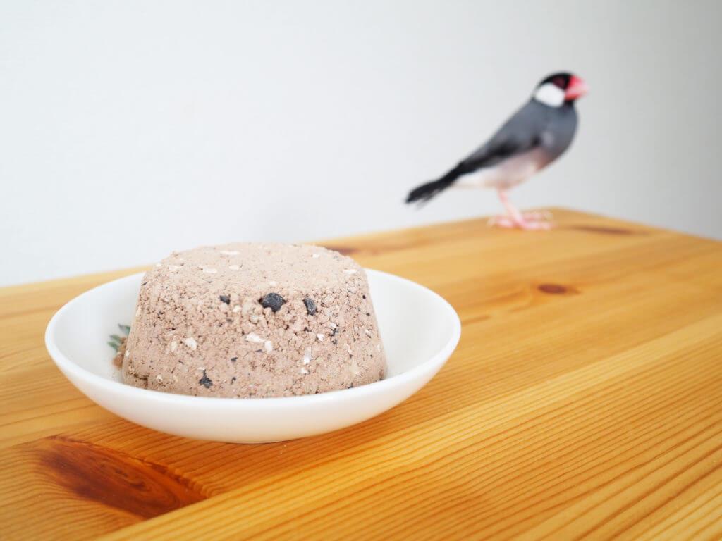 塩土から距離を取っている文鳥のラムネくん