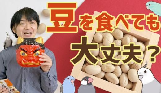 節分豆を食べても大丈夫?【インコ・鳥】